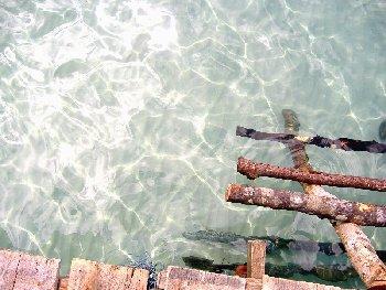 Super clean water around Koh Kood resort