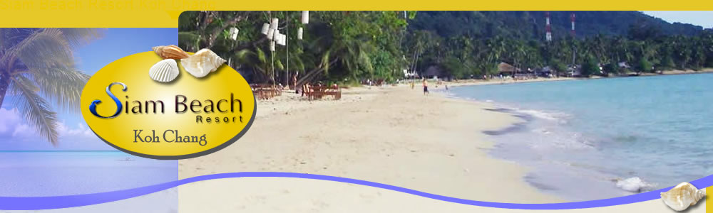 latest news in Siam Beach header image